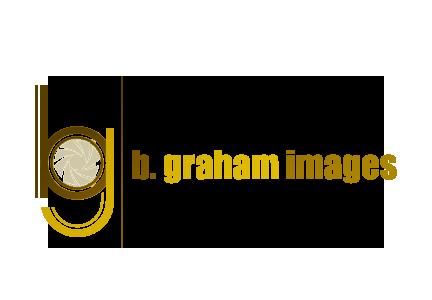 bg-images-logo